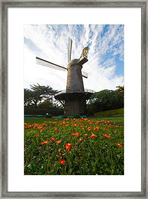 Windmill And Poppies Framed Print