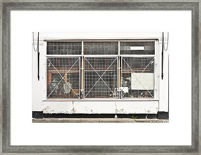 Window Bars Framed Print