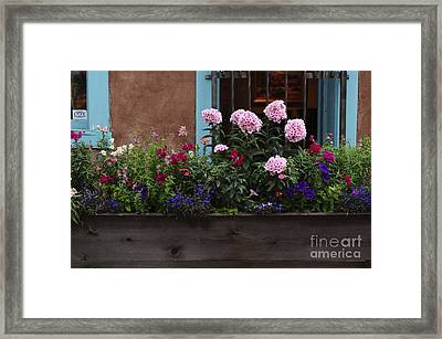 Framed Print featuring the photograph Window-box Flowers  by Sherry Davis