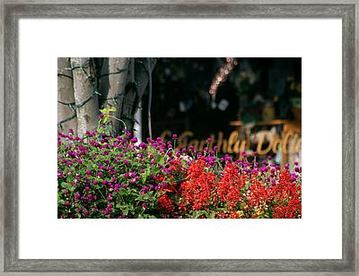 Framed Print featuring the photograph Window Box by Lou Belcher