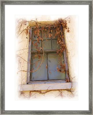 Window In Time Framed Print by FeVa  Fotos