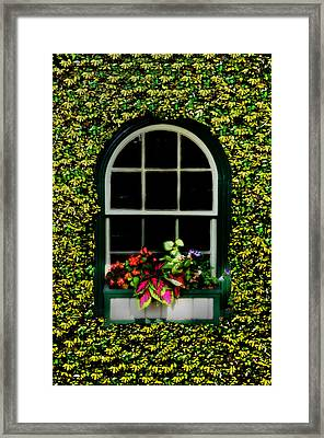 Window On An Ivy Covered Wall Framed Print by Bill Cannon