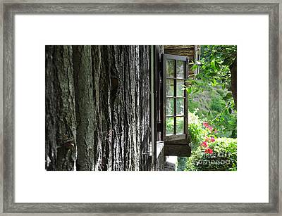 Window To The Graden Framed Print by Tanya  Searcy