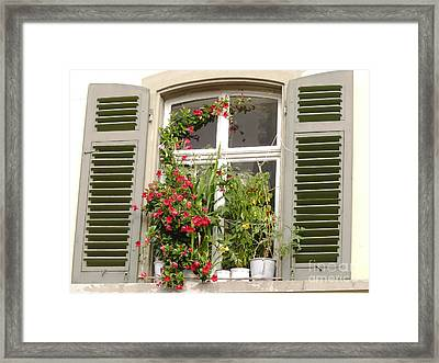 Window With Flower Pots Framed Print