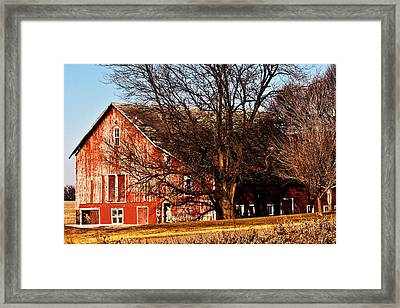 Windows And Doors Framed Print by Edward Peterson