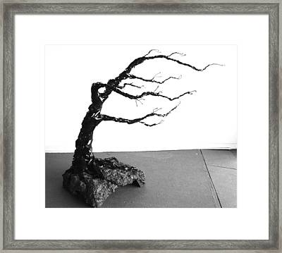 Winds Of Change Framed Print by Ellery Russell