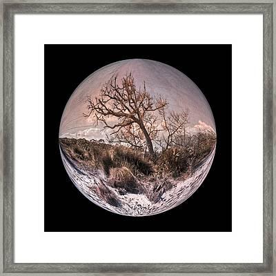 Windswept At Driftwood Beach II Framed Print
