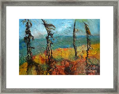Windswept Pines Framed Print