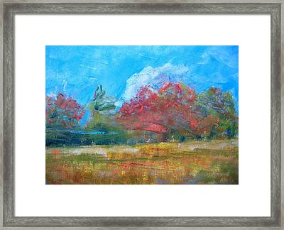 Windy Day Framed Print by Lisa Dionne