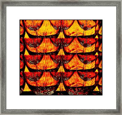 Wine And Dine 4 Framed Print by Will Borden