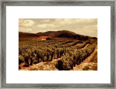 Wine Country Framed Print by Peter Tellone