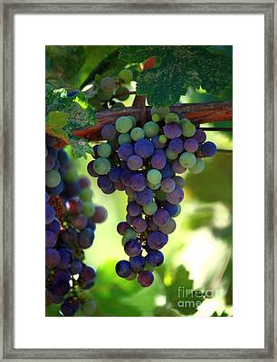 Wine To Be Framed Print