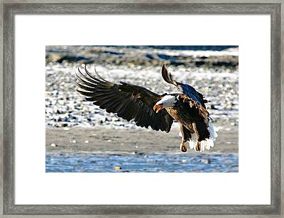 Framed Print featuring the digital art Wings by Carrie OBrien Sibley