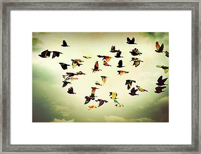 Wings Of Colors Framed Print by Manuel Orero Galan