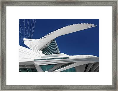 Wings Wide Open Framed Print
