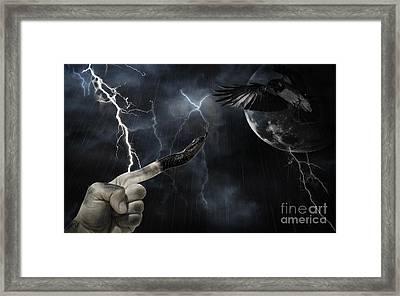 Winner Takes All Framed Print by Joanne Kocwin