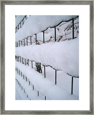 Winter Framed Print by AmaS Art