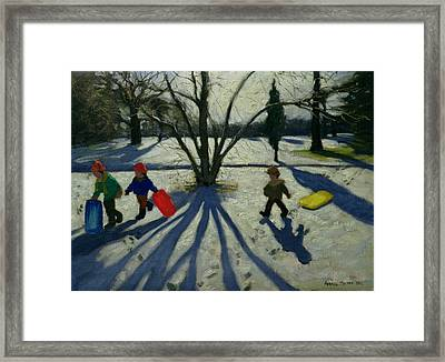 Winter Framed Print by Andrew Macara