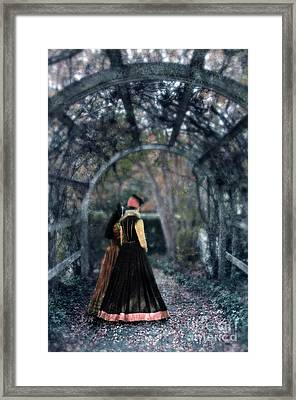 Winter Arbor Framed Print by Jill Battaglia