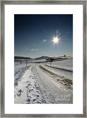 Winter Beauty 1 Framed Print