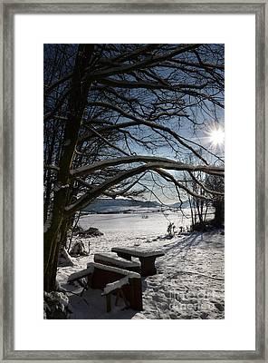 Winter Beauty 2 Framed Print