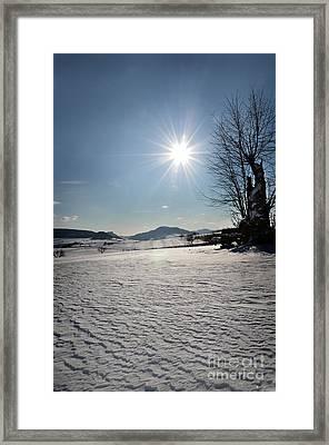 Winter Beauty 3 Framed Print