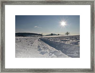 Winter Beauty Framed Print