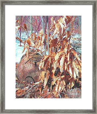 Winter Beech Framed Print