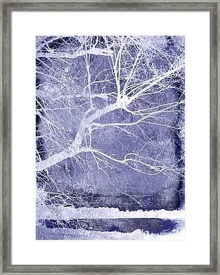 Winter Blues Framed Print by Ann Powell