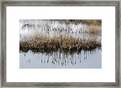 Framed Print featuring the photograph Winter Bouquet by I'ina Van Lawick