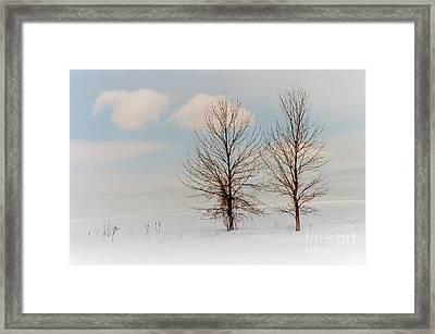 Winter Companion Framed Print by Ken Marsh