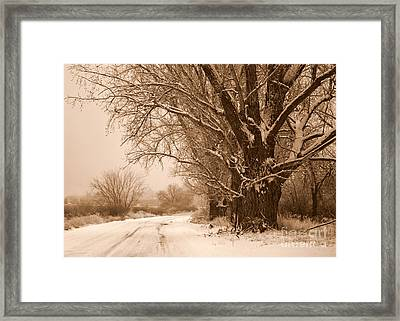 Winter Country Road Framed Print