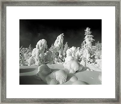 Winter Cover Framed Print