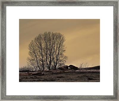 Winter Day At The Beach Framed Print by Marion McCristall