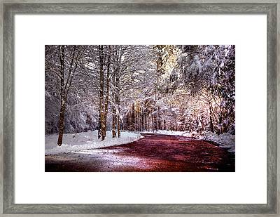 Winter Drive Framed Print by Anthony Citro