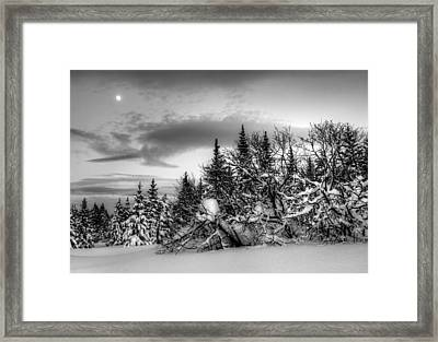 Framed Print featuring the photograph Winter Evening by Michele Cornelius