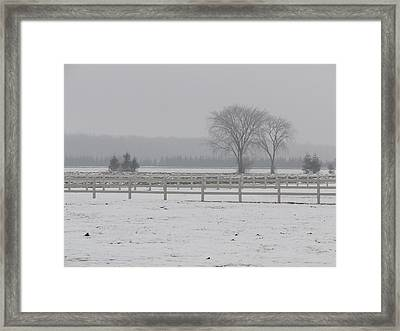 Winter Fog On The Paddocks Framed Print