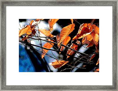 Framed Print featuring the photograph Winter Forest by Mike Flynn