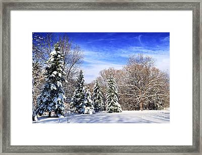Winter Forest With Snow Framed Print by Elena Elisseeva