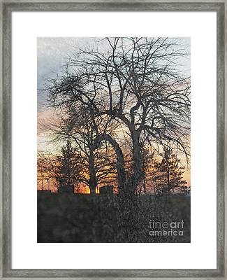 Winter Freeze Framed Print