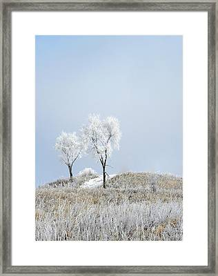Winter Frost Framed Print by Julie Palencia