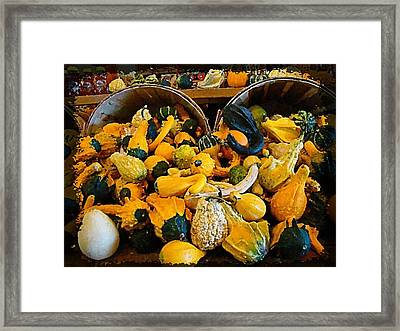Winter Gourds  Framed Print by Nick Kloepping