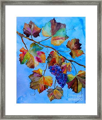 Winter Grapes Framed Print by Fred Meehan