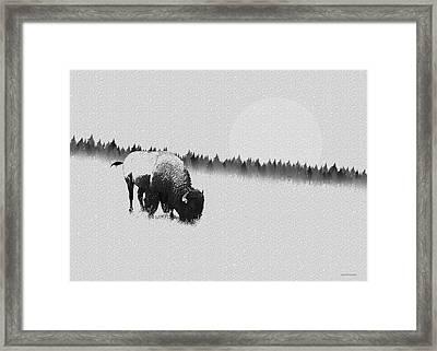 Winter Graze Framed Print by Ron Jones