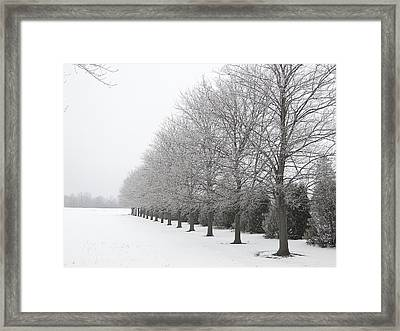 Winter Hoar Frost On Trees Framed Print