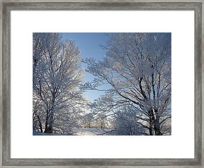 Winter Ice Framed Print