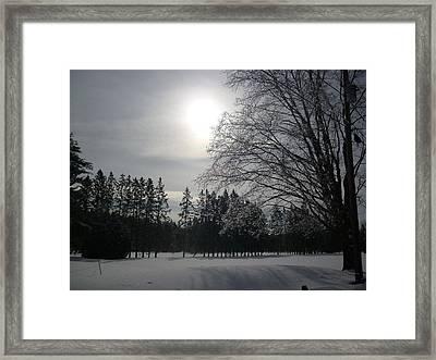 Winter Ice Framed Print by Pamela Turner