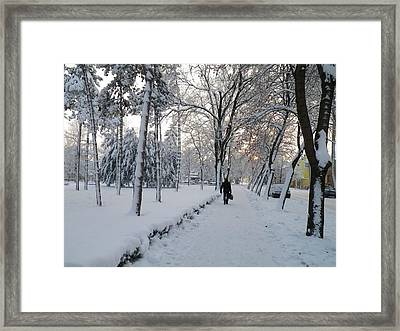 Framed Print featuring the photograph Winter In Mako by Anna Ruzsan