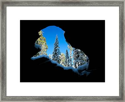Winter Inside Out Framed Print