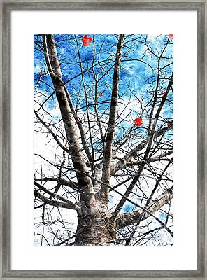 Winter Is Near Framed Print by Andee Design